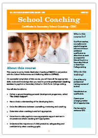 practitioner coach certificate
